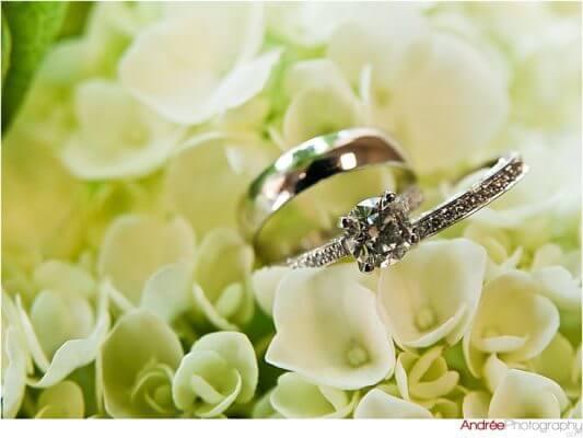 Anna-Neil_004-533x400 Anna and Neal {Married} | Alabama Wedding Photographer Business Wedding