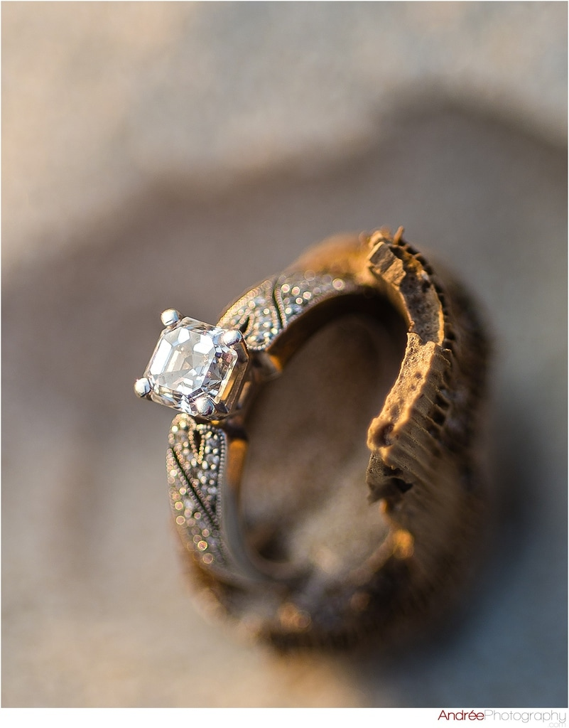 wedding-photo-macro-diamond-ring