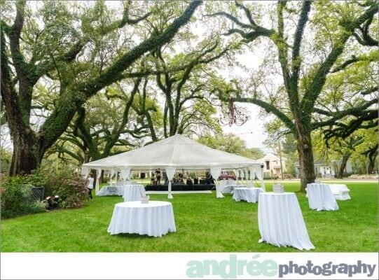 wedding-photos-bragg-mitchell-mansion-emily-harrison_0070-541x400 Emily and Harrison {Married} | Mobile Alabama Wedding Photographer Wedding