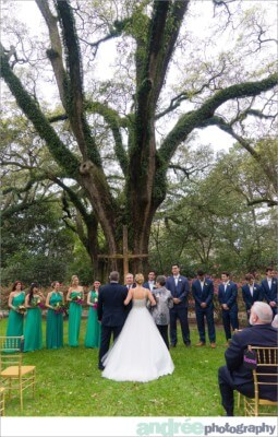 wedding-photos-bragg-mitchell-mansion-emily-harrison_0102-255x400 Emily and Harrison {Married} | Mobile Alabama Wedding Photographer Wedding