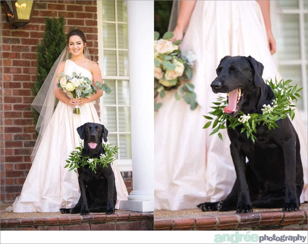 peyton-outdoors-oak-trees-black-lab-dog-bridal-session_0010 Peyton {Bridal Session}   Private Residence   Mobile, AL Bridal Wedding