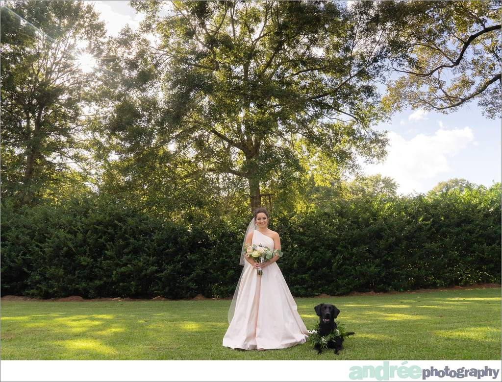 peyton-outdoors-oak-trees-black-lab-dog-bridal-session_0015 Peyton {Bridal Session}   Private Residence   Mobile, AL Bridal Wedding