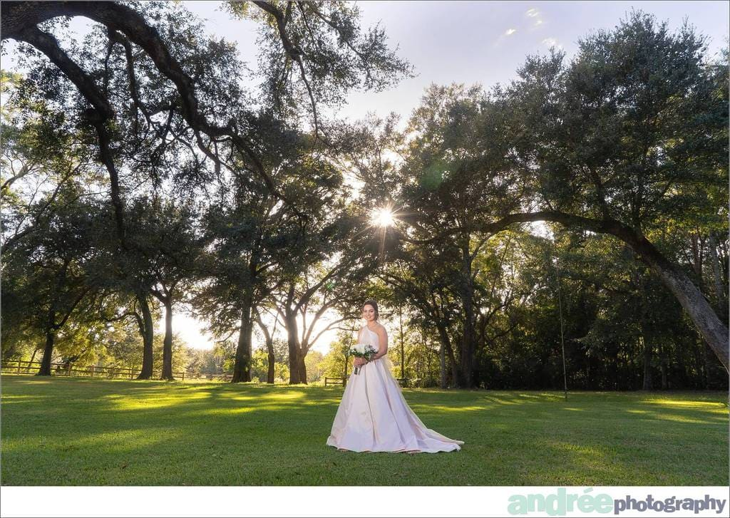 peyton-outdoors-oak-trees-black-lab-dog-bridal-session_0023 Peyton {Bridal Session} | Private Residence | Mobile, AL Bridal Wedding