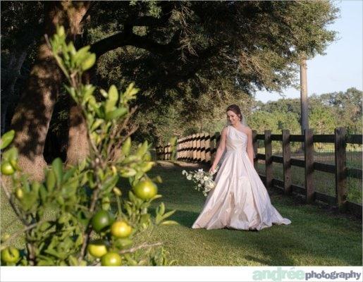 peyton-outdoors-oak-trees-black-lab-dog-bridal-session_0037-515x400 Peyton {Bridal} | Alabama Bridal Photographer Bridal Editorial Wedding