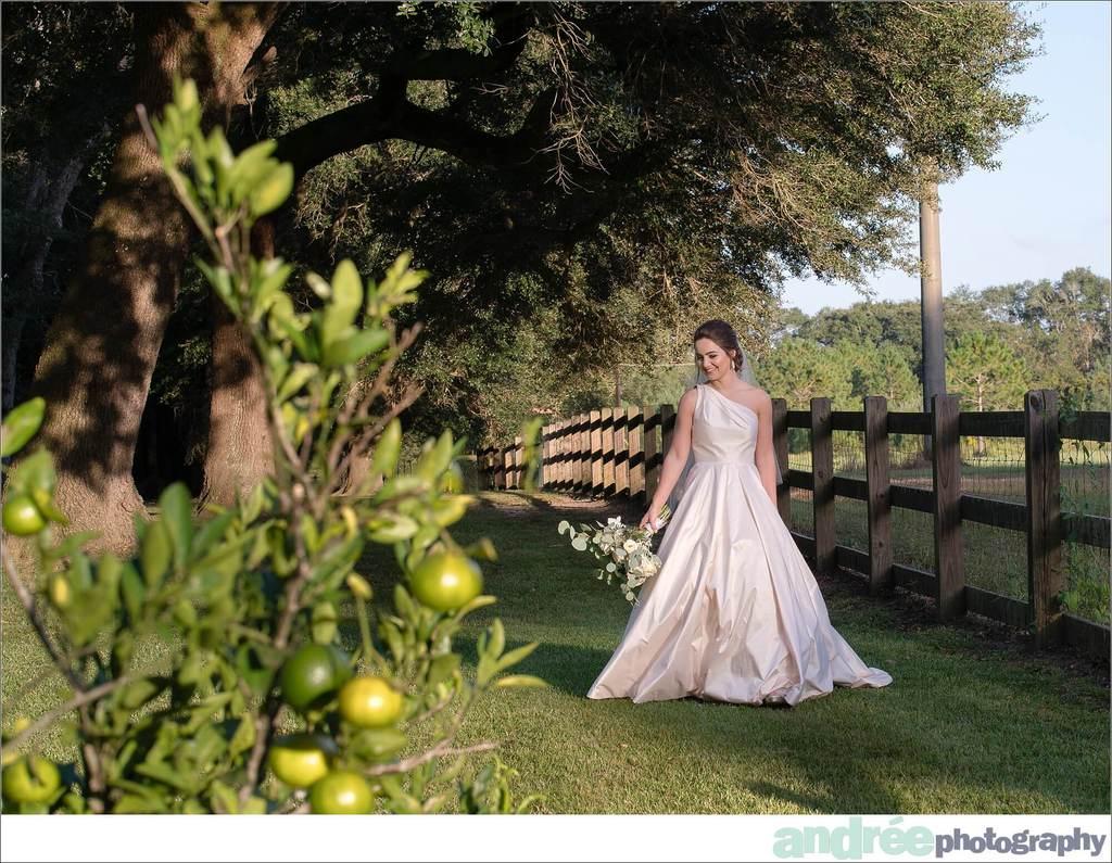 peyton-outdoors-oak-trees-black-lab-dog-bridal-session_0037 Peyton {Bridal Session} | Private Residence | Mobile, AL Bridal Wedding