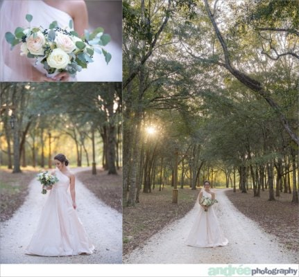 peyton-outdoors-oak-trees-black-lab-dog-bridal-session_0044-431x400 Peyton {Bridal} | Alabama Bridal Photographer Bridal Editorial Wedding
