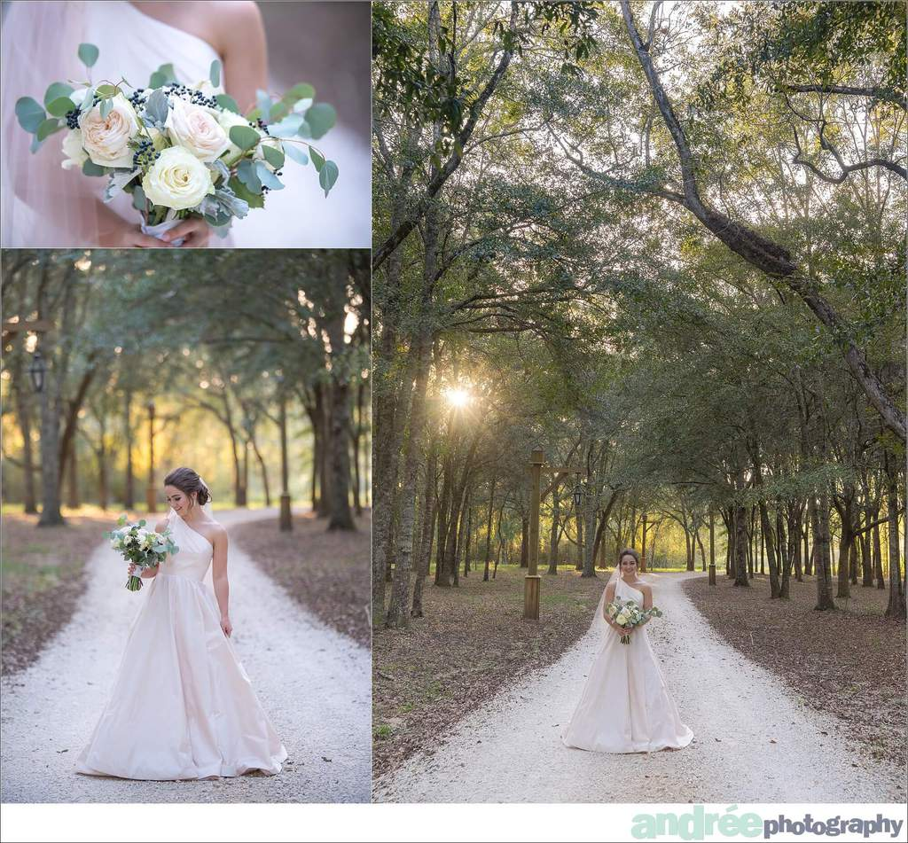 peyton-outdoors-oak-trees-black-lab-dog-bridal-session_0044 Peyton {Bridal Session} | Private Residence | Mobile, AL Bridal Wedding