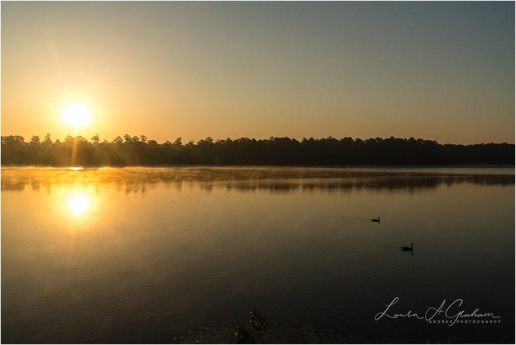 waterlilies-lake-paul-b-johnson-state-park-sunrise-fog_0018 Blooming Waterlilies | Traveling Landscape Photographer Adventure Editorial Personal