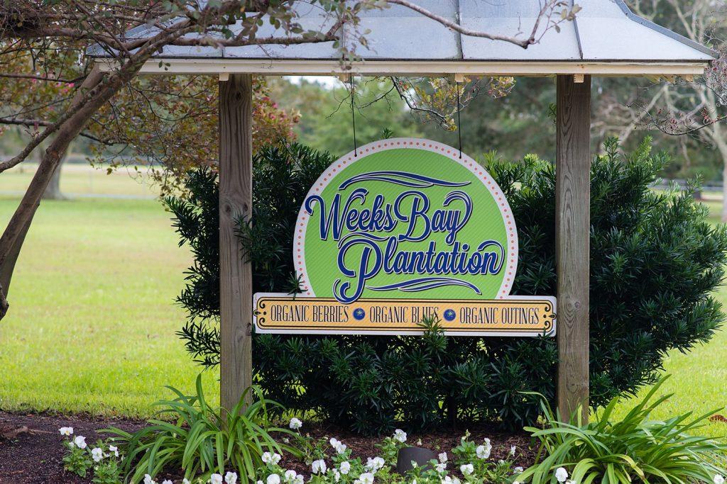 glam-outdoors-rustic-weeks-bay-plantation-fairhope-alabama-peyton-addison-wedding_0001-1024x683 Peyton and Addison {Married} | Weeks Bay Plantation | Fairhope, AL Wedding